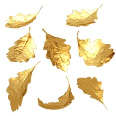 FreeGreatPicture.com-24340-d-high-definition-picture-golden-leaves.jpg