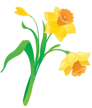 cartoon-daffodil-vector-2226795.jpg